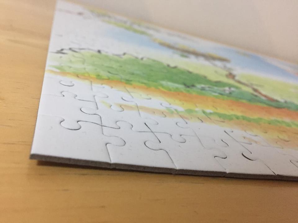 【人生初】1000ピースのパズルに挑戦したが、「もう二度とやらない」と決意した。