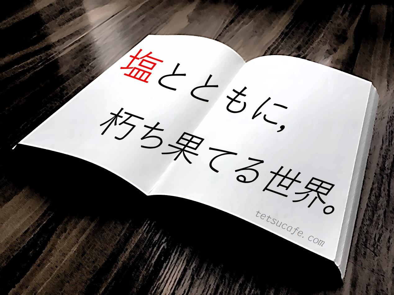 【ネタバレ感想】有川浩・作「塩の街」は最高の感動作。