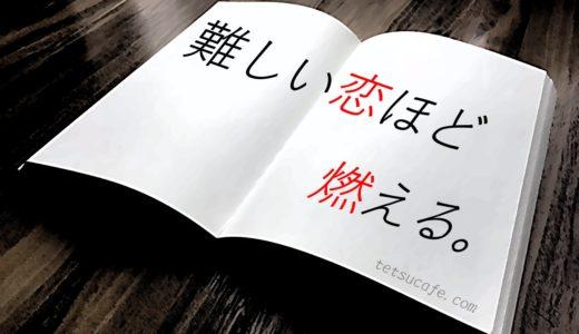 【ネタバレ感想】誉田哲也・作「ドンナビアンカ」は恋する男の物語。