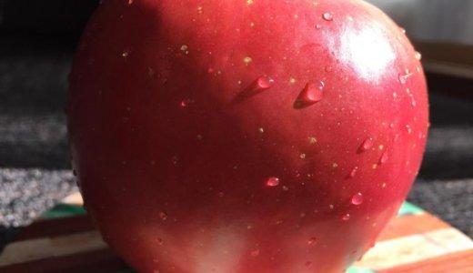 リンゴの丸かじりの良いところ&悪いところ。