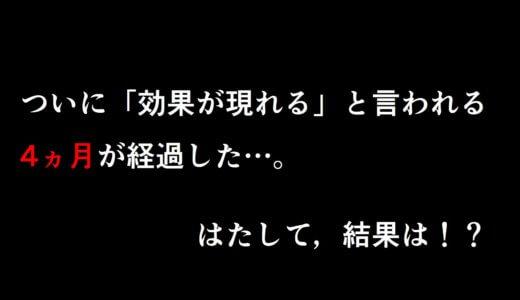 【必見】本気の育毛日記,勝負の4ヵ月目!